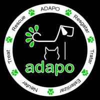 thumb_adapo